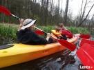 spływy kajakowe Lubuskie Torzym