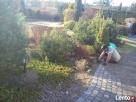 abonament pielęgnacyjny-koszenie trawników,pielenie,opryski Marki