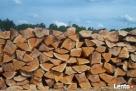 Drewno kominkowe - 1