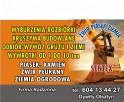 prace roboty ziemne usługi mini koparka ładowarka Olsztyn - 1