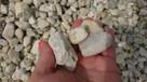 Kamienie ozdobne, kruszywo ozdobne otoczak kremowy - 1