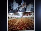wspomaganie chowu i hodowli zwierząt dla zdrowia ludzi - 4