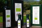 Agrocompleks turystyczny z marką bio oliwy z oliwek