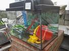 Akwarium 50x30x30cm z wyposazeniem - 2