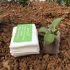 100 sztuk worków do sadzenia 8*10 cm