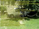 Wywoz mebli, RTV, AGD, zlomu, lozek, Bus przeprowadzka,