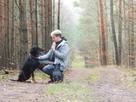 Toro ok.2 letni pies w typ dobermana do adopcji Joanna Koc - 3