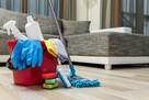 Oferuję sprzątanie domów