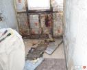 Dezynfekcja mieszkania domy odgrzybianie - 5
