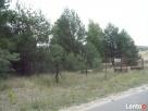 Działka rekreacyjna w Korzeczniku Podlesie 4300m2 Babiak