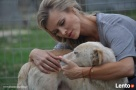 Valentino- Joanna Krupa poleca do adopcji! - 4
