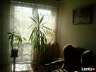Mieszkanie - wspaniała lokalizacja - 1