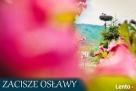 Zacisze Osławy Agroturystyka Bieszczady- wolne terminy Komańcza