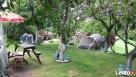pole namiotowe ,,Oaza - 6