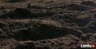 Miejsce na wywóz ziemi / humusu NIE GRUZU ! RYDUŁTOWY - 2