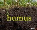 Miejsce na wywóz ziemi / humusu NIE GRUZU ! RYDUŁTOWY - 1
