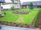 Usługi ogrodnicze-wycinka drzew i,formowanie krzewów,trawnik - 6