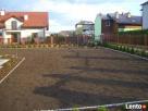 Usługi ogrodnicze-wycinka drzew i,formowanie krzewów,trawnik - 3