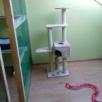 Domowy hotelik dla kotów - 3