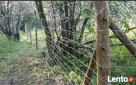 Siatka leśna/budowlana - 200/17/30 L 50mb ocynk - 4