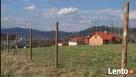 Siatka leśna/budowlana - 200/17/30 L 50mb ocynk - 5