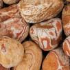 Kamień Otoczak Tęczowy Do Ogrodu worek 25 kg - 1
