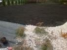 Ziemia ogrodnicza pod trawnik, nasadzenia, grządki