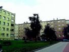Sprzątanie osiedli ,wspólnot mieszkaniowych , bloków ,mycie - 2