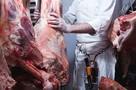 RZEŹNIK - wołowina lub cielęcina