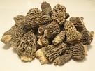 Smardz jadalny, (Morchella esculenta) SUSZONY 20 gr - 2