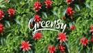 Greensy zielona ściana ogród wertykalny pixel garden A8