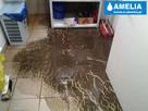 Sprzątanie po wybiciu kanalizacji zalaniu Chorzów - 3