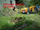Zrębkowanie mielenie gałęzi utylizacja rębak +mini traktor