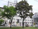 Zamienię mieszkanie komunalne 23m2 Praga-Południe na większe