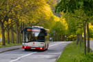Szukam pracy - Kierowca Autobusu