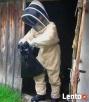 TANIO! USUWANIE GNIAZD Os, Pszczół, Szerszeni, Bąków,