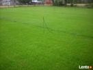 trawa w rolkach - 4