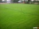trawa w rolkach - 3