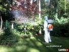 Skuteczne zwalczanie komarów poprzez oprysk terenu Wołomin
