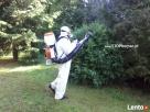 Skuteczne zwalczanie komarów poprzez oprysk terenu - 6