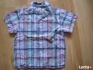Koszule Leszno