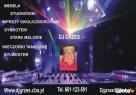 DJ NA SYLWESTER - WESELA I INNE OKOLICZNOŚCI