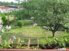 3 pokojowe mieszkanie, działka, ogród+2 garaże - 4