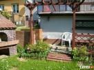 3 pokojowe mieszkanie, działka, ogród+2 garaże - 2