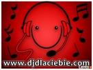 dobry DJ + Wodzirej na ekstra wesele + nagłośnienie + lasery - 8