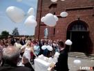 PudloZbalonami.PL-poleca pudło z balonami na wesele,urodziny Opole