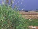 Agroturystyka - 2