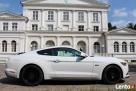 Biały Mustang do Ślubu GT! Najnowszy model Bydgoszcz