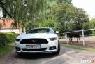 Biały Mustang do Ślubu GT! Najnowszy model - 6