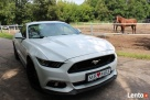 Biały Mustang do Ślubu GT! Najnowszy model - 7